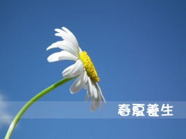 春夏養生拷貝
